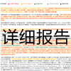 PaperRight报告打印版